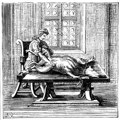 Animal-To-Human Blood Transfusion, 1679--Giclee Print