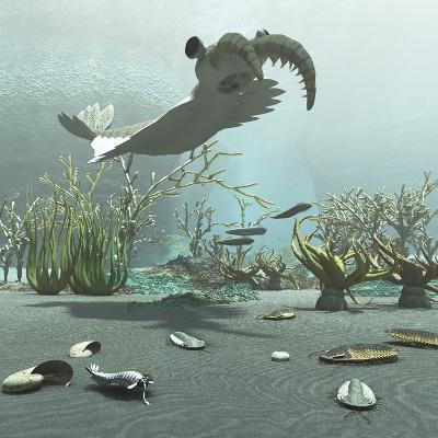 Animals and Floral Life from the Burgess Shale Formation of the Cambrian Period-Stocktrek Images-Art Print