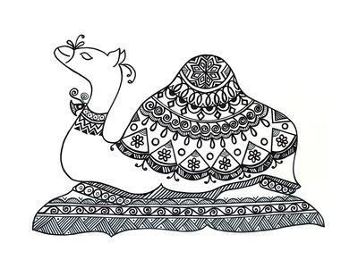 https://imgc.artprintimages.com/img/print/animals-camel-2_u-l-q1bjwi90.jpg?p=0