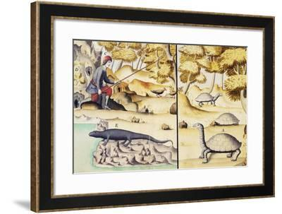 Animals of Galapagos Islands, Engraving from Account of Journey Made by Jacques Gouin De Beauchene--Framed Giclee Print