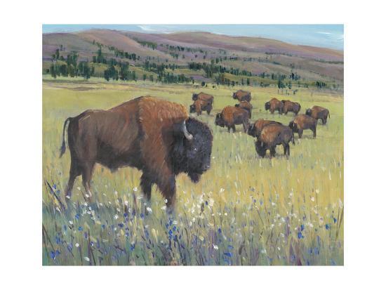 Animals of the West I-Tim O'Toole-Art Print