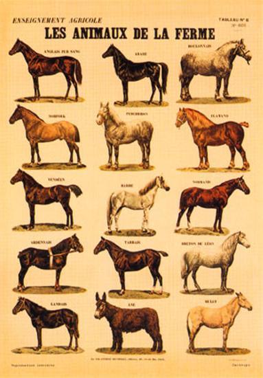 Animaux de la Ferme (Horses)--Art Print