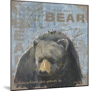 Where Does a Bear Sleep by Anita Phillips