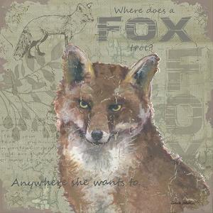 Where Does a Fox Trot by Anita Phillips