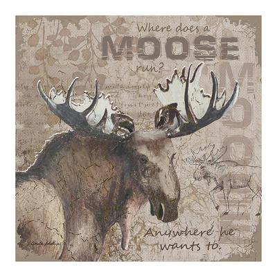 Where Does a Moose Run