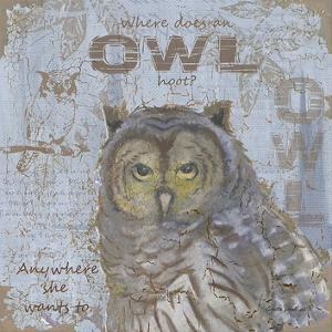Where Does an Owl Hoot by Anita Phillips