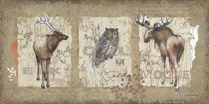 Woodlands II by Anita Phillips