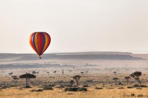 Dawn Hot Air Balloon Ride, Masai Mara National Reserve, Kenya, East Africa, Africa by Ann and Steve Toon