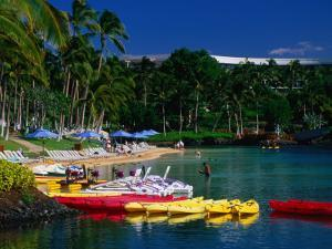 Canoes and Pedal-Boats Lined Up on the Shore of a Lagoon at the Hilton Waikoloa, Hawaii, USA by Ann Cecil