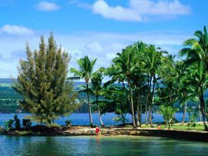Coconut Island, a Small Island in Hilo Bay, Hawaii, USA by Ann Cecil
