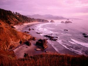 Overhead of Coastline, Cannon Beach, Evening, Ecola State Park, U.S.A. by Ann Cecil