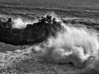 California, Big Sur, Big Wave Crashes Against Rocks and Trees at Julia Pfeiffer Burns State Park