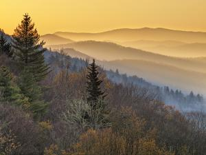 North Carolina, Great Smoky Mountains National Park, Sunrise from the Oconaluftee Valley Overlook by Ann Collins