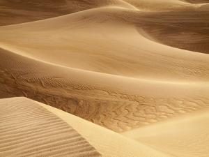 USA, California, Death Valley National Park. Close-Up View of Mesquite Flat Dunes by Ann Collins