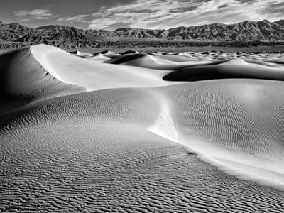 USA, California, Death Valley National Park, Morning Sun Hits Mesquite Flat Dunes by Ann Collins