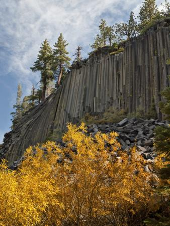 USA, California, Eastern Sierra, Devils Postpile National Monument in Autumn by Ann Collins
