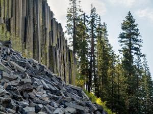 USA, California, Eastern Sierra. Devils Postpile National Monument in Autumn by Ann Collins
