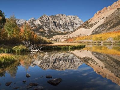 USA, California, Eastern Sierra. Fall Color Reflected in North Lake