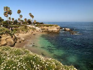 USA, California, La Jolla, Clear Water on a Spring Day at La Jolla Cove by Ann Collins