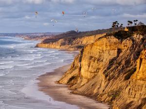 USA, California, La Jolla. Paragliders Float over Black's Beach in Late Afternoon by Ann Collins