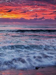 USA, California, La Jolla, Reflections of Sunset at Windansea Beach by Ann Collins