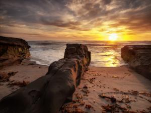 USA, California, La Jolla, Sunset, Coast Blvd. Park by Ann Collins