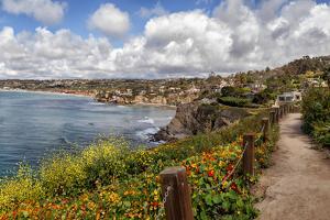 USA, California, La Jolla, View from Coast Walk by Ann Collins