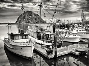 USA, California, Sepia-Tinted Fishing Boats Docked in Morro Bay at Dawn by Ann Collins