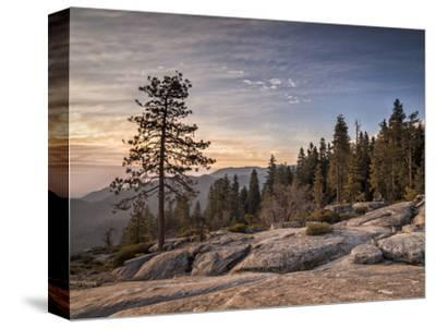 USA, California, Sequoia National Park. Sunset Near Beetle Rock Education Center
