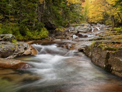 USA, New Hampshire, White Mountains, Fall at Jefferson Brook by Ann Collins