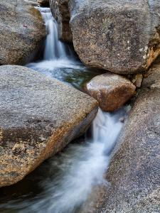 USA, New Hampshire, White Mountains, Lucy Brook flows past granite rock by Ann Collins