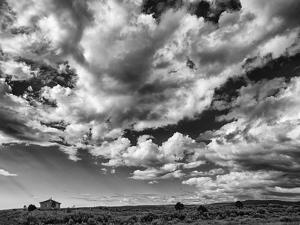 USA, New Mexico, Homestead by Ann Collins