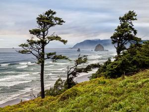 USA, Oregon, Cannon Beach, View of Haystack Rock by Ann Collins