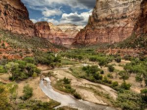 USA, Utah, Zion National Park, View Along the Virgin River by Ann Collins