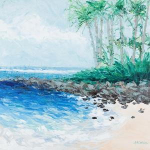 Little Cove by Ann Marie Coolick