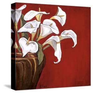 Callas on Red by Ann Parr