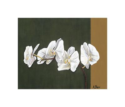 Orchid Study I