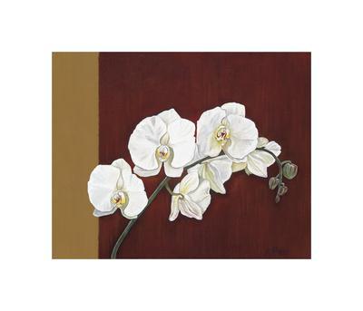 Orchid Study II