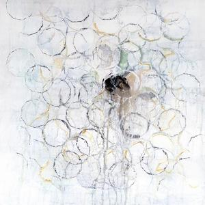 Seeds by Ann Tygett Jones Studio