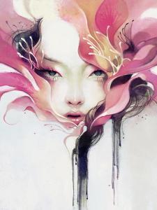 Bauhinia by Anna Dittman