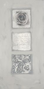 Roses Melange by Anna Flores