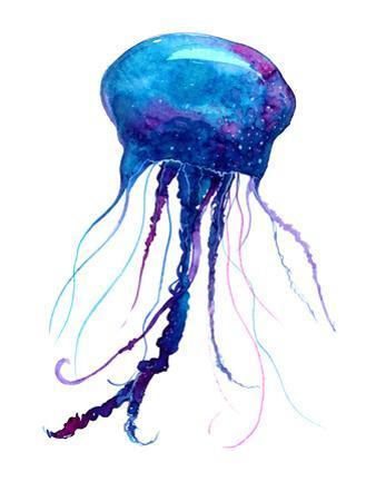 Jellyfish Watercolor Illustration by Anna Kutukova