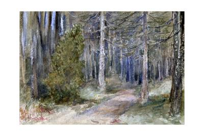 In a Wood', c1864-1930