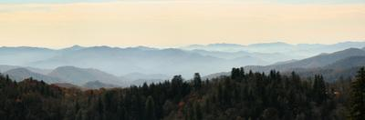Clingmans Dome panorama, Smoky Mountains National Park, Tennessee, USA by Anna Miller