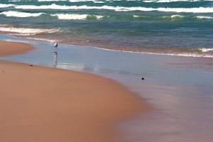 Indiana Dunes beach and Lake Michigan, Indiana Dunes, Indiana, USA by Anna Miller