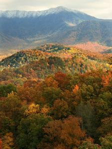 Mt LeConte above fall foliage, Smoky Mountains, Tennessee, USA by Anna Miller