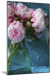 Peony Study by Anna Miller