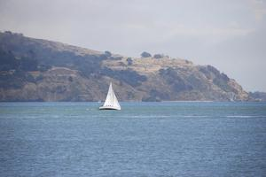 Sailboat on the Bay, Sausalito, Marin County, California by Anna Miller