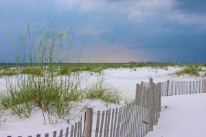 USA, Florida. Dunes and grasses on Santa Rosa island beach. by Anna Miller