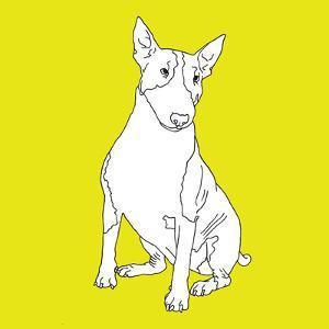 Bull Terrier by Anna Nyberg